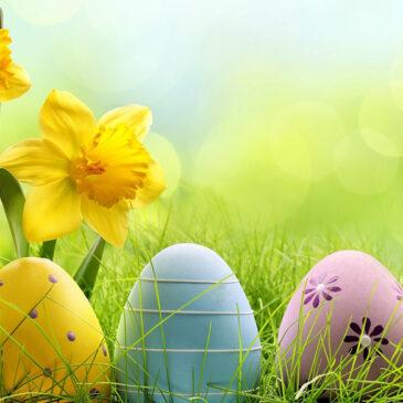 Ostatni pokój na Wielkanoc w Niechorzu!